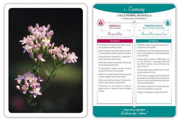 carte fiori di Bach con libro guida